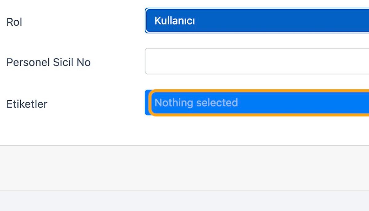 Uygun olan kullanıcı tipini seçin. Daha sonra bu seçiminizi değiştirebilirsiniz.